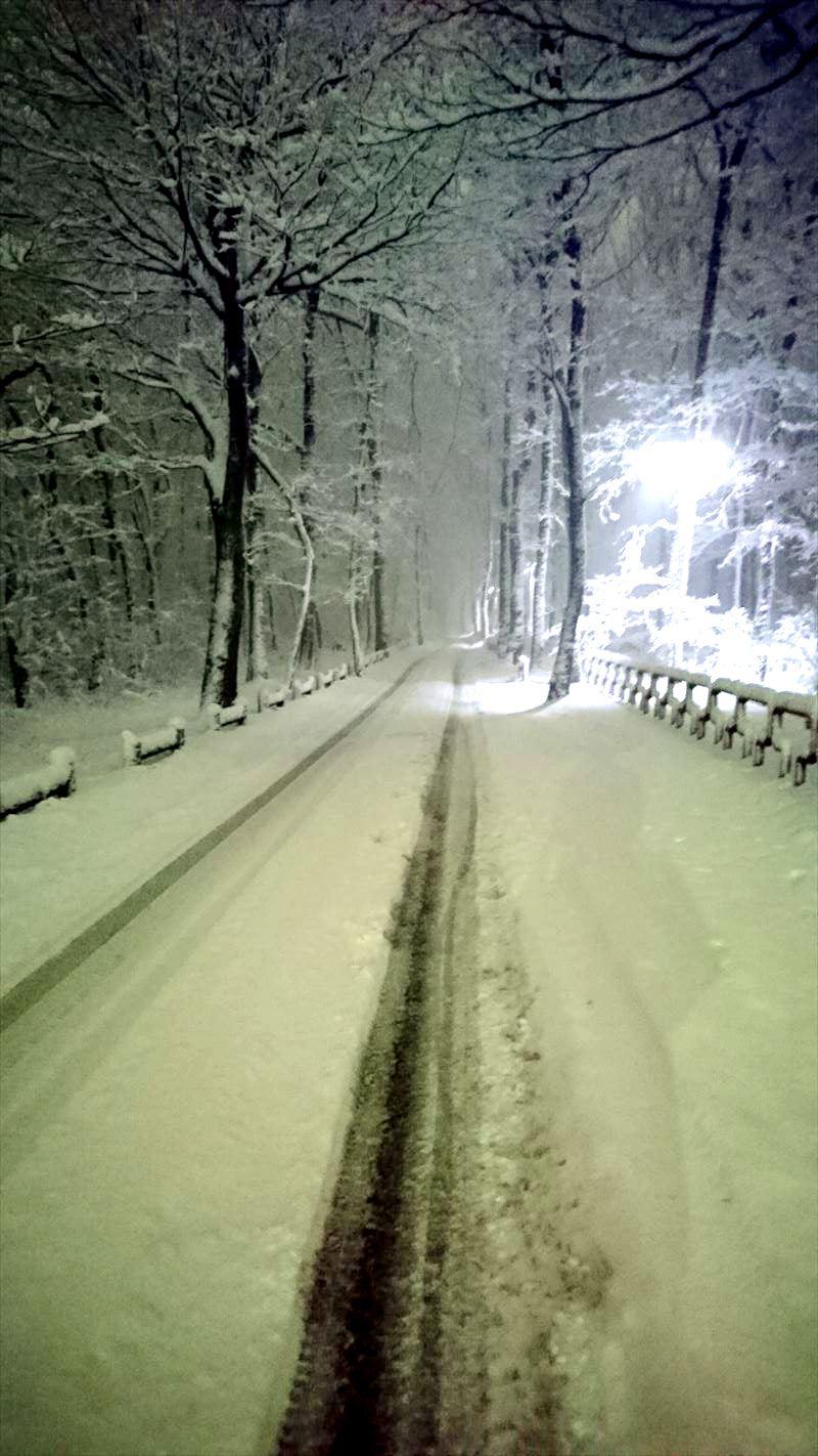 雪の日の夜道